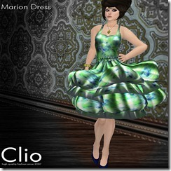 (Clio)- Marion Moss DressPIC