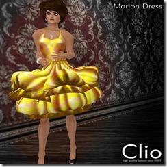 (Clio)- Marion Mustard DressPIC
