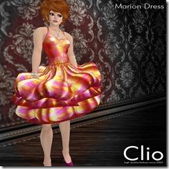 (Clio)- Marion Rose DressPIC