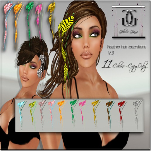Feathers  hair  extensions V3 -ad 1