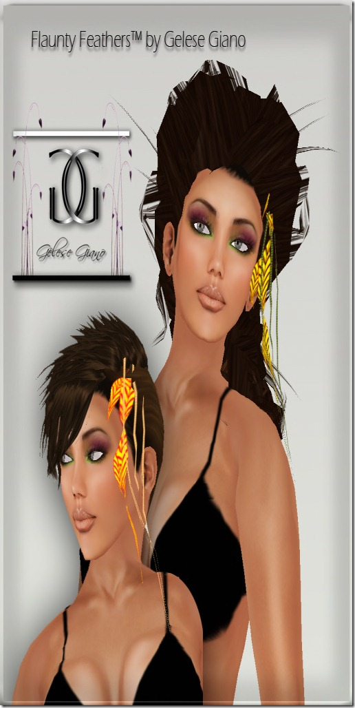 Feathers  hair  extensions V3 -ad 2CLU