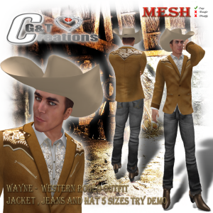 G&T Vendor Western Blazer Wayne suede jacket